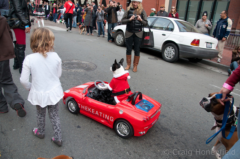 One of the two parade mascots.  This guy got all of the attention!
