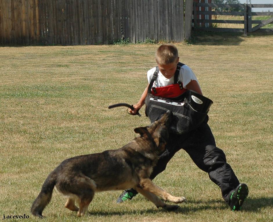 Floh working on young helper Noah Duffey.