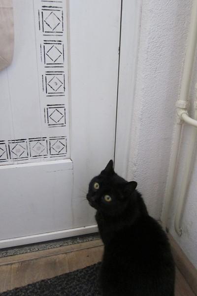 Hij wil eruit