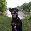 Fritz on the Rappahannock River.
