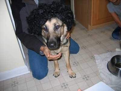 Fritzi wig