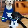 November 2013 GO CANUCKS!!!