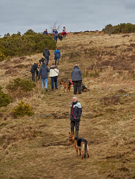 GSD Walk at Knapps Loch - Kilmacolm - 13 March 2016