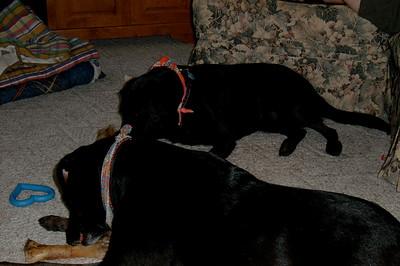 Gita and Molly July 2006