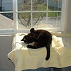 Chelan loving the sun