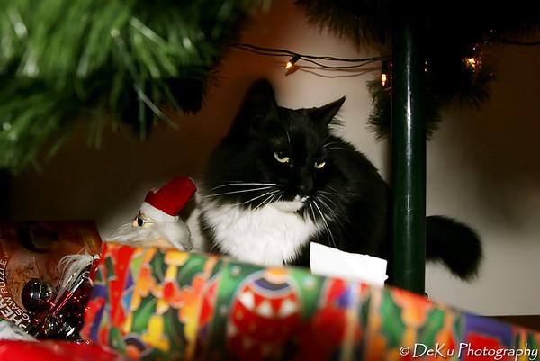 Christmas2007(web)_0004