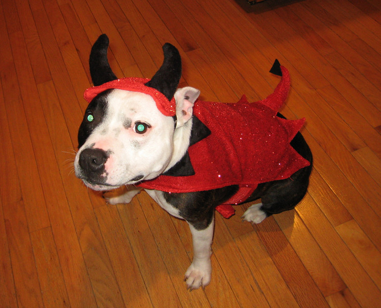 Griffin has devilishly good looks in his costume.