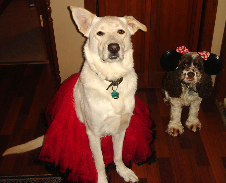 Sophie Ray wears a delightful skirt while Lucy Fur does her best Minnie Mouse.