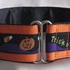 "Happy Halloween on orange, 1 1/2"" wide (Albi's tag collar shown)"