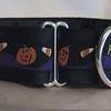 "Happy Halloween on black, 1 1/2"" wide collar"