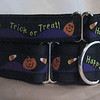 "Happy Halloween on black, 1 1/2"" wide collar and 1"" greyhound style #2 tag collar"