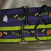 "Happy Halloween on purple or kiwi, 1 1/2"" wide collars"