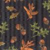 Acorns and Leaves