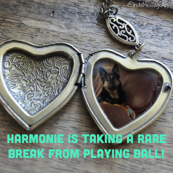 Beautiful locket with Harmonie's beautiful photo inside