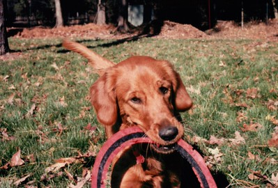 1987 Learning Frisbee