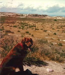 1987 Trip to Sloan 2