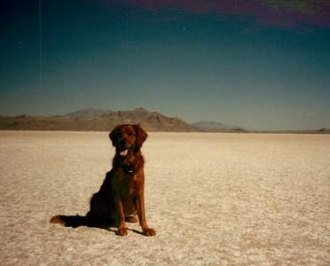 1987 Trip to Sloan 3