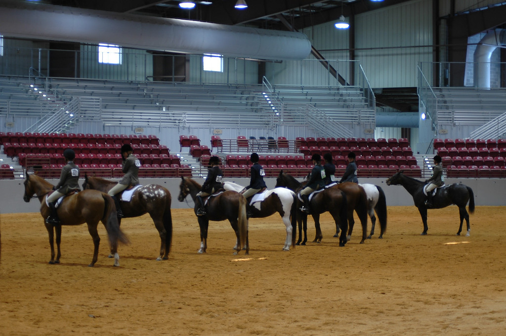 line up at a show