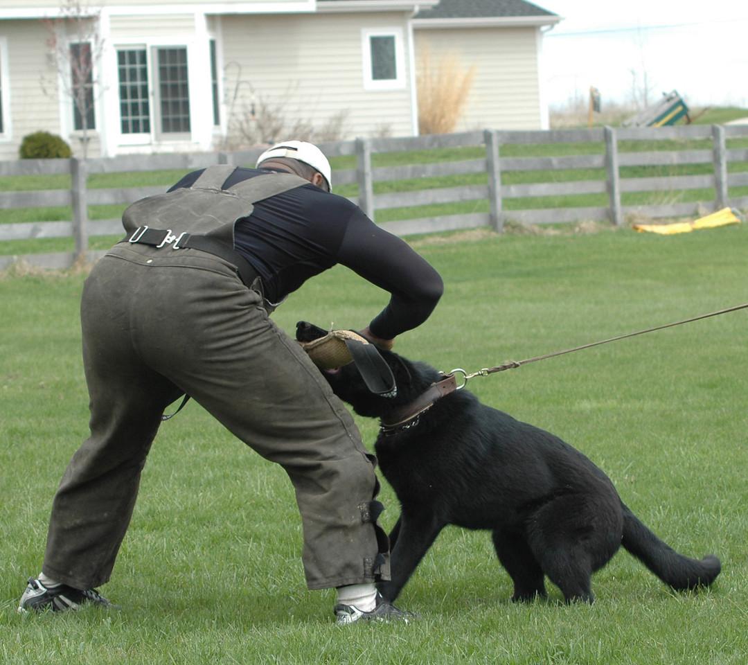 Terence & Jackson, ICSC training, 4/24/11