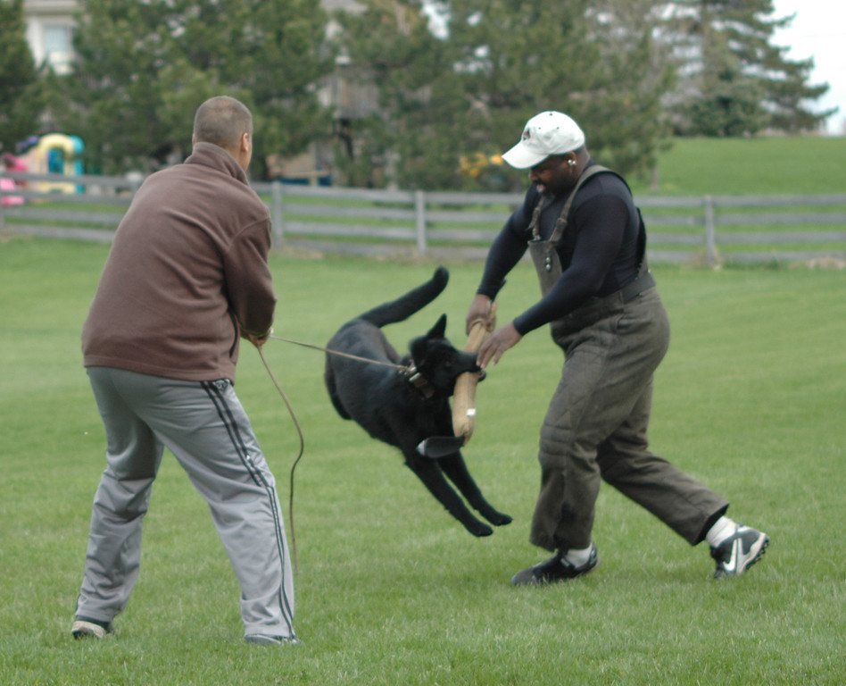 Terence, Bill & Jackson, ICSC training, 4/24/11