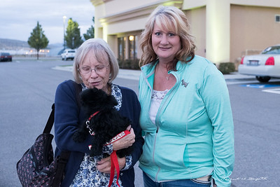 We got Archee in the parking lot at the Hampton Inn in Tremonton, Utah on October 4, 2016 - he was almost 10 weeks old. His breeder, Cheryl is from Idaho.