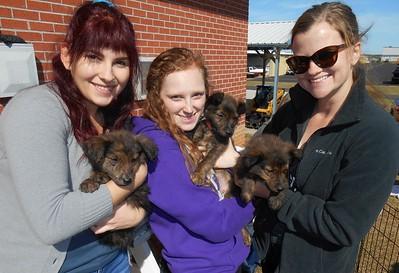 Flight Crew Sanya, Grace & Skylar with the beautiful Friend pups. :)