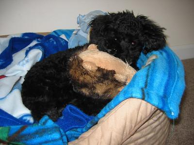 April 2009 5 months old