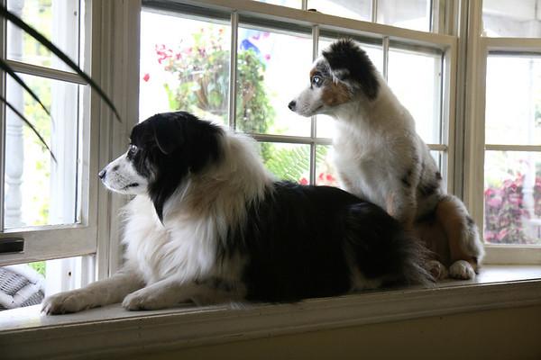 Jessie & Kaylie 10/01/06