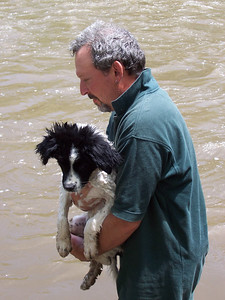 A sudsy dog about to be dunked in the Rio Grande.