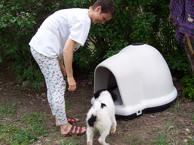 Caroline introduces Jester  to his new Dogloo doghouse.