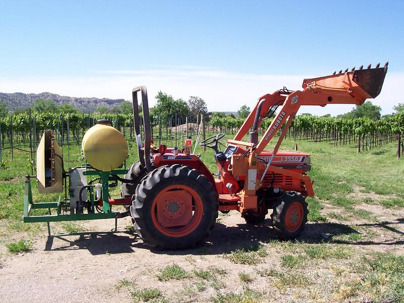 Jester's favorite new way to get around the vineyard.
