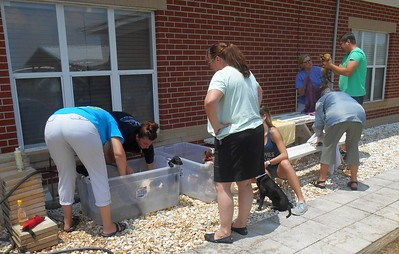 Good thing it was a hot day and we had lots of help!