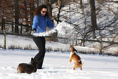 Lindsay, Finn and Belle playing in the snow.