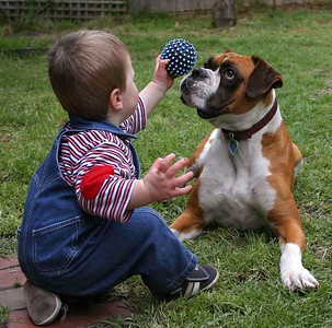 Kids 'n Dogs
