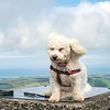 Kiri at the top of Snaefell