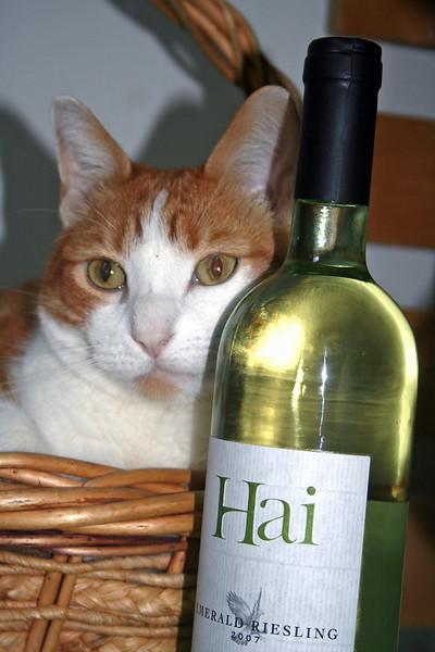 Oh Hai, I has wine.