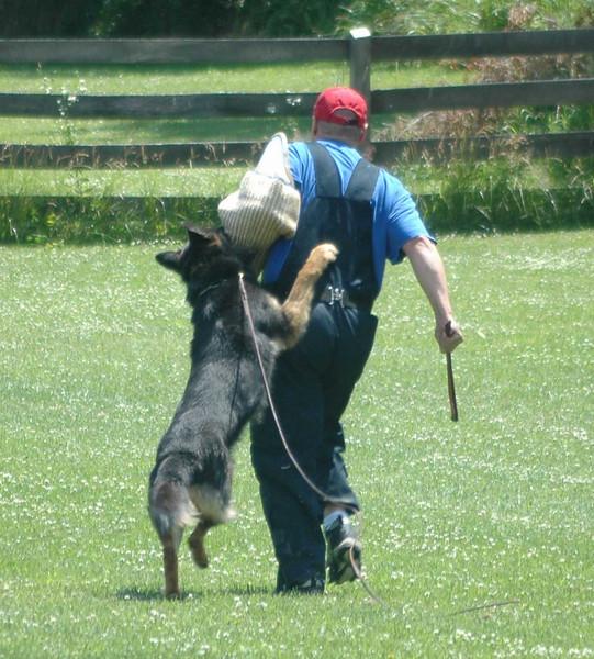 Fun training, summer 2008 (eight years old)