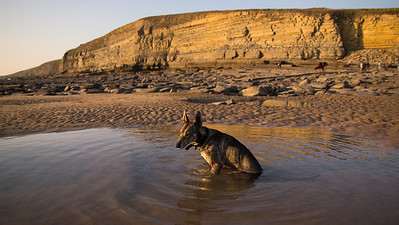 Water-dog strikes again!! This time at Dunraven Bay.