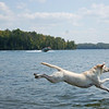 Jumping off the deck. (photo: Rich C. Bollow).<br /> Saltando del muelle. (foto: Rich C. Bollow).<br /> Lola: 3 years 4 months.