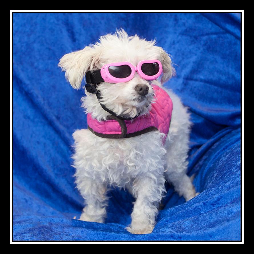 Elsie an Older Rock Star...
