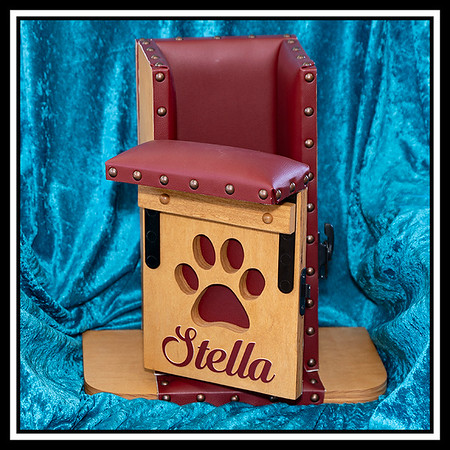 Bailey Chair used to feed dog with regurgitation problems.  Chair keeps the dog upright when feeding and prevents regurgitation of food.
