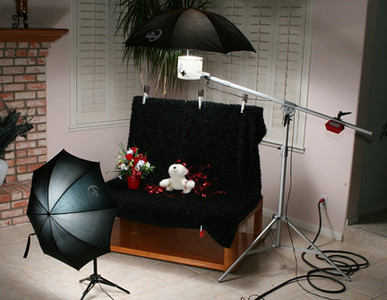 White Lightning WL5000 units.  Main light bounced into a white umbrella from overhead and fill bounced into a silver umbrella from camera position.  Background material supported by stand fabricated from 1.5 inch (3.8 cm) PVC pipe and held in place by spring clamps.  The boom makes lighting a lot easier.  I use the stuffed animal to test my lighting setup. I shoot from an office chair with wheels so I can move around but, stay at he dog's level.  The owner or handler will stand behind the background and hold the dog with a thin black show lead which I will remove using Photoshop. I use a feathered toy on a wand to attract the dog's attention and hold a rubber squeaker between my teeth to entice the dog to look at the camera.