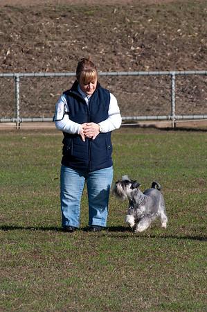 Maitland Dog Obedience Winter 2010