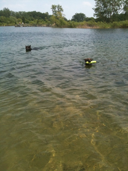 swimming w/kway @ the hollows, summer 2010