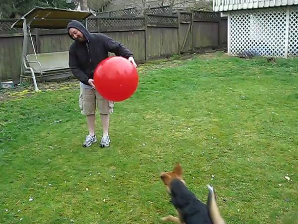 2009-04-02 - Moki Big Red Ball4
