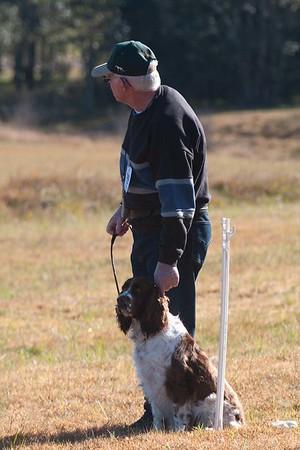 Maitland Dog Obedience Winter 2018