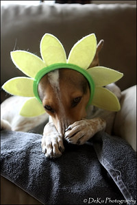 Easter-Marta0410(web)_0008