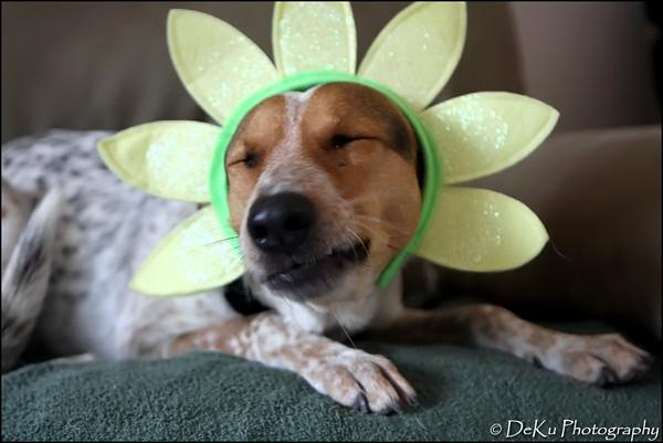 Easter-Marta0410(web)_0002