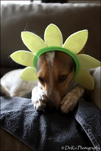 Easter-Marta0410(web)_0007