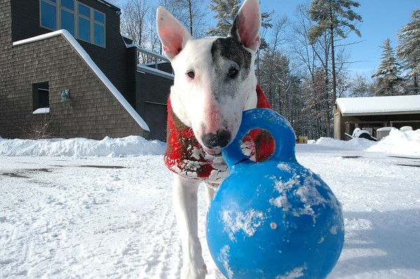 Mary Alice with Blue Ball (Jan 2005)
